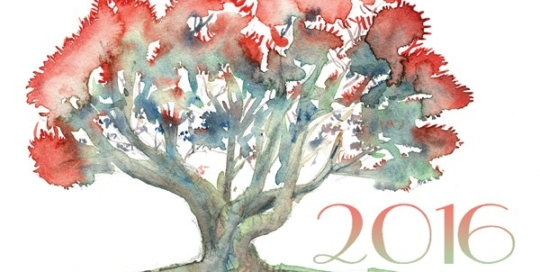 New-Year-Eve-pohutukawa