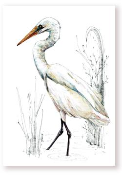 Kōtuku – White Heron